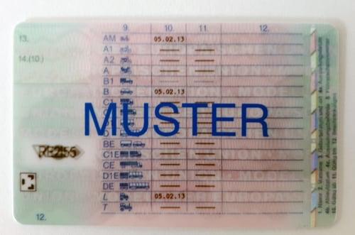 Führerschein ab 2013 Rückseite