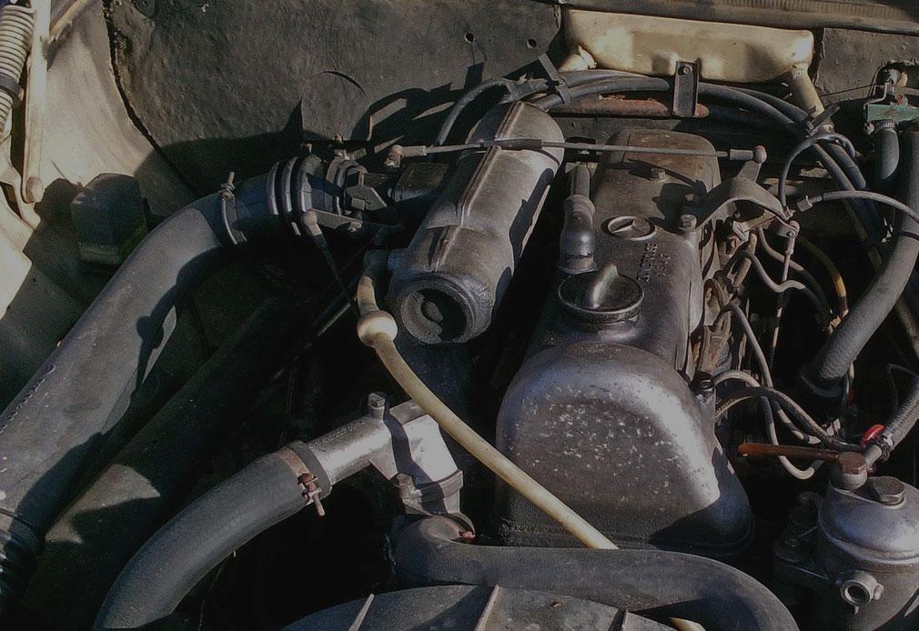 Marderschaden-Motorraum